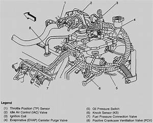 chevy 4 3l v6 engine free download wiring diagram With 4 3 liter chevy engine