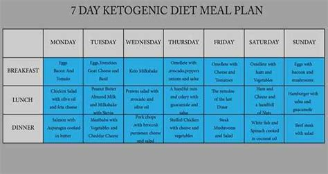 ketogenic diet  day ketogenic diet meal plan