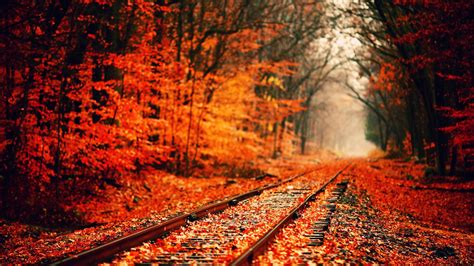 Fall Backgrounds For Desktop Computers by Fall Computer Backgrounds 76 Images