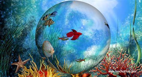 fond d ecran poisson qui bouge fond d 233 cran anim 233 s gratuits fond d 233 cran hd