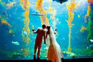 aquarium wedding venues birch aquarium at scripps exquisite weddings