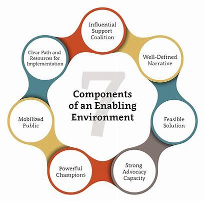 Advocacy Framework Level Environment Enabling Components Effective