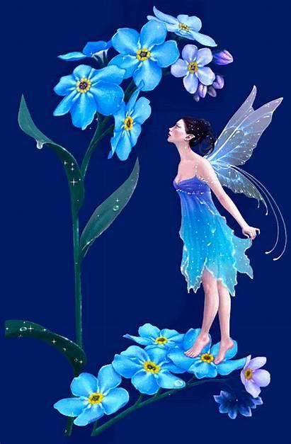 Fairy Rose Yorkshire Berni Fanpop Club Animated