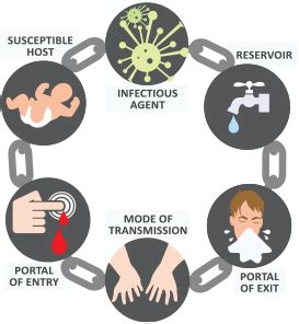 chain of infection activity breaking the chain