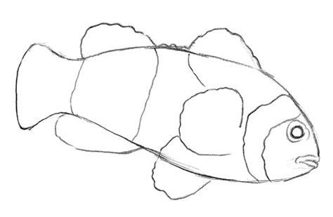 bilder malen leicht einen fisch zeichnen malen
