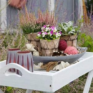 Deko Für Terrasse : romantische pflanzideen f r balkon und terrasse im herbst caro herbst deko herbst und balkon ~ Orissabook.com Haus und Dekorationen