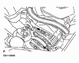 Replace Serpentine Belt Toyota Echo