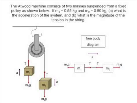 Free Body Diagrams Translational Equilibrium Animated