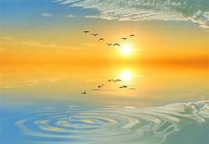 Summer Solstice - Angela  Medium Of The Angels