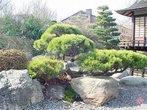 Kleiner Japanischer Garten : kleinen japanischen garten teich google search garten pinterest kleiner japanischer ~ Markanthonyermac.com Haus und Dekorationen