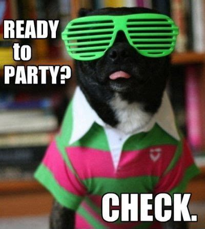Birthday Party Memes - funniestmemes com funny memes ready to party check via relatably com party pic