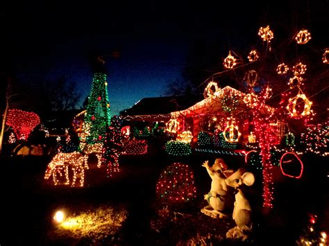 christmas lights yard full of holiday decorations picture
