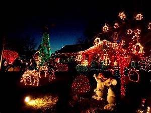 Christmas, Lights, Yard, Full, Of, Holiday, Decorations, Picture