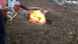 Burning, A, Stump, With, The, Leaf, Blower, 2