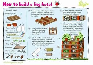 Nichoir A Insecte : comment construire un tr s grand nichoir insectes ~ Premium-room.com Idées de Décoration