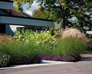 Sichtschutz Garten 2 Meter Hoch : vorgarten ziergr ser gestalten chinaschilf 2 meter hoch gartenpflanzen pinterest ~ Bigdaddyawards.com Haus und Dekorationen
