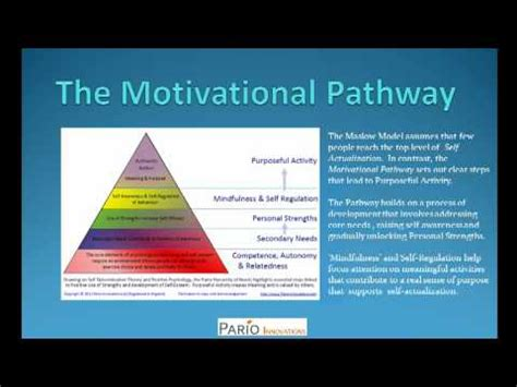 maslows hierarchy   maslow motivation theory