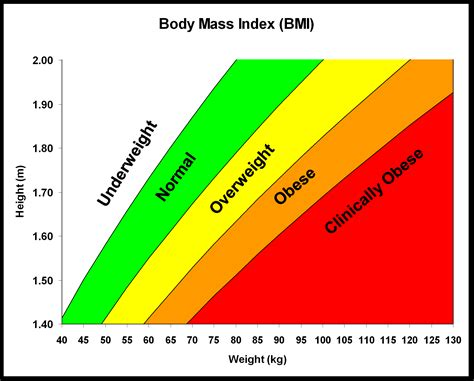 Why Is Cardiovascular Fitness So Important Feel Fit