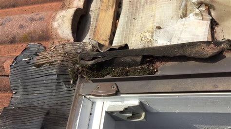 Wasser An Den Fenstern by Dachfenster Undicht Einbau Zu Tief Wasser L 228 Uft 252 Ber Den