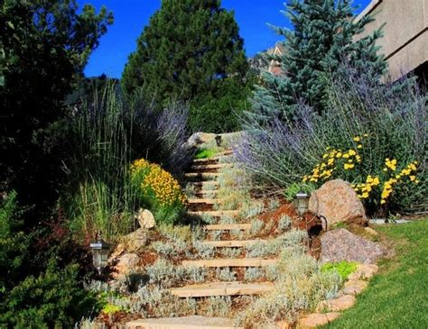 landscape slopes slope landscape traditional landscape denver by hedstrom property enhancement