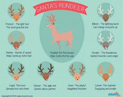 Reindeer Names Rudolph Santa Santas Dasher Christmas