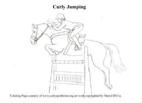 csi  coloring contest curly sporthorse international