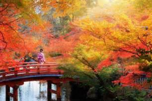 places   world   gorgeous fall foliage