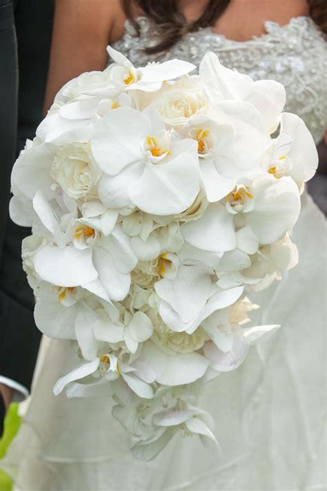 white orchid bouquet ideas  pinterest orchid
