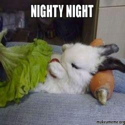 Nighty Night Meme - nighty night make a meme