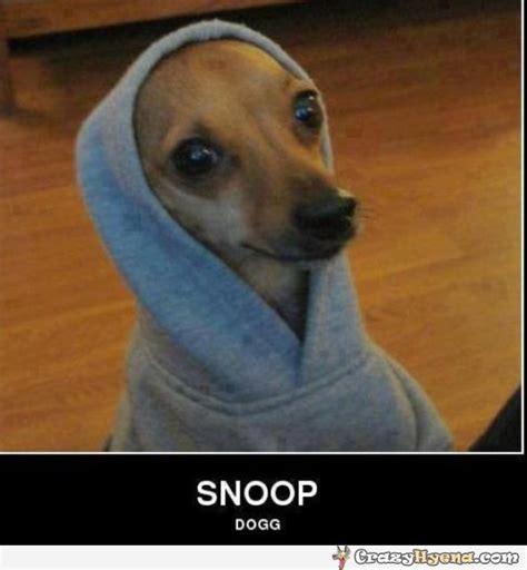 Snoop Dog Meme - snoop dogg meme