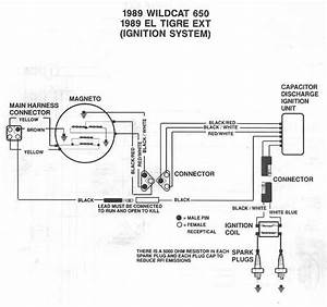 Polaris Sportsman 500 Voltage Regulator Diagram  Diagram