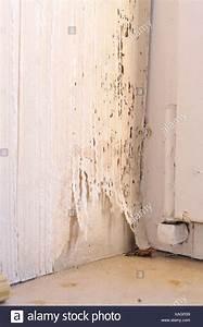Schwarzer Schimmel An Der Wand : schimmel in der wand simple schimmel entfernen entsorgen im hausmll with schimmel in der wand ~ Orissabook.com Haus und Dekorationen