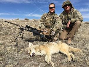 Coyote Hunting Gear Of 2018  Prices  Buying Guide  Expert