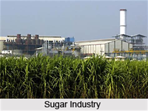 Govt issues strict norms for sugar industries to reduce ...