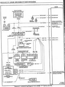 Tanning Bed Wiring Diagram