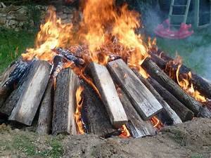 How, To, Burn, Out, A, Tree, Stump, The, Easy, Way