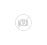Image result for female fantasy authors