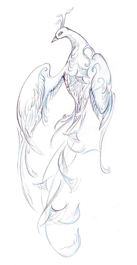 draw  elegant fantasy bird  colored pencils