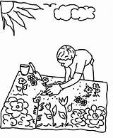 Coloring Garden Pages Planting Flower Seed Gardening Seeds Plant Tools Grow Water Colouring Raised Jug Printable Germination Pouring Template Watering sketch template