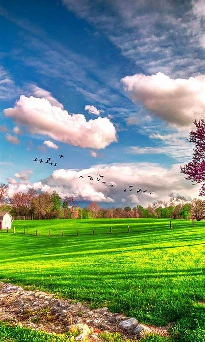 Nature Spring Backgrounds Iphone Wallpapers Landscape Android