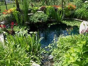 Conseils Et Astuces Pour Avoir Un Magnifique Jardin