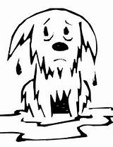 Wet Dog Coloring Google Clip Colouring Sheets Dogs sketch template