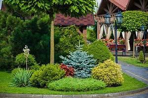 Pflanzen Für Nordseite : immergr nes blumenbeet anlegen standort pflanzen ~ Frokenaadalensverden.com Haus und Dekorationen