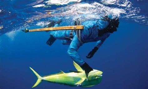 types  spearfishing spearfishing nz ocean hunter