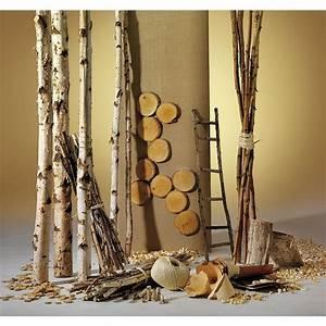 Deko dekoidee birkenholz dekoration bei dekowoerner for Dekoration mit birkenstämmen