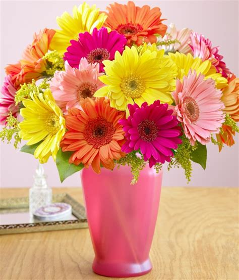 Garden Pot Arrangements by Gerbera Daisies Feature Flower For A Cheerful Arrangement