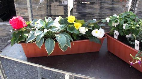 Blumenkästen Balkon Befestigen by Blumenkasten Balkon Befestigung Blumentopf Balkon 2er