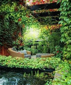 25+ best ideas about Garden Oasis on Pinterest
