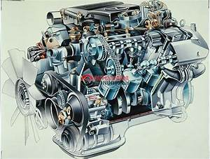 Mercedes Benz Wiring Diagram V 8 Engine M119