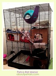 best 25 ideas about diy mouse cage find what you ll love